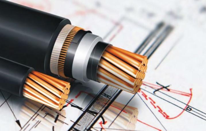 Tổng kho cung cấp dây cáp điện LS Vina